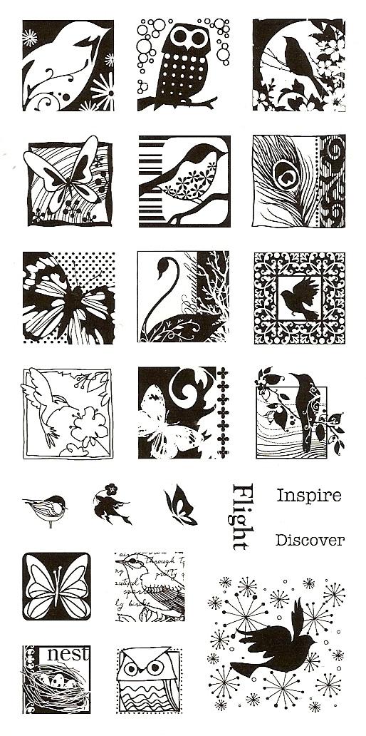 Butteflies and birds