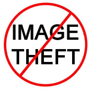 Anti image theft